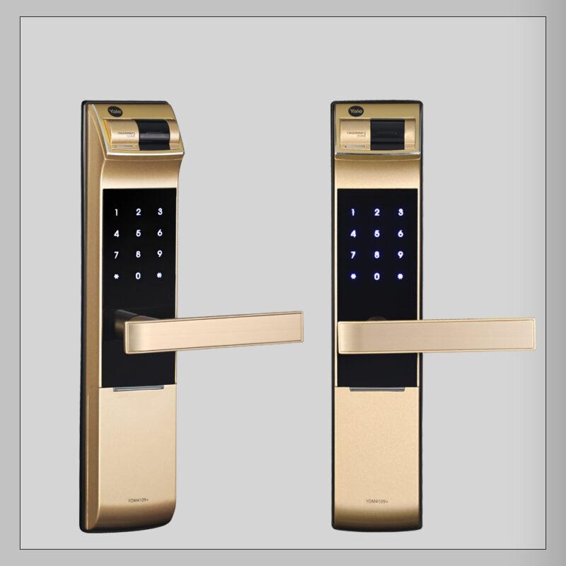 YDM4109-gold